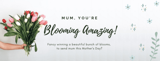COMPETITION: blooming amazing prize awaiting to help celebrate Mother's Day